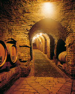 The cellar seventeenth century.
