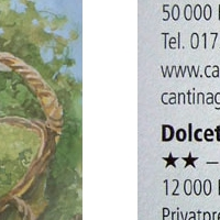 Rassegna Stampa - Guides 2008.